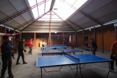 Tenis de Mesa (1)